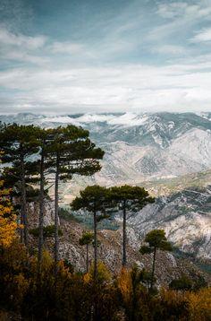 Pyrenees catalanes, Espagne - Serra de Boumort