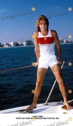 Andy Gibb Photo by Bob Sherman/Globe Photos, Inc.