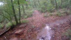 Wolfe Creek Trail