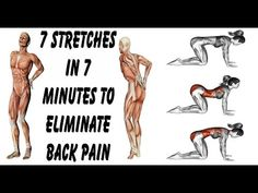 7 Exercises in 7 Minutes to Never Feel Lower Back Pain Again !!! * Creative People DIY