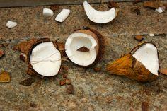Kokosy rozbijane w hinduskich świątyniach