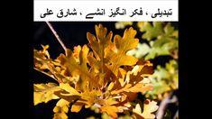 تبدیلی کی قبولیت ، فکر انگیز انشے ، شارق علی  Coping with change, THOUGH...
