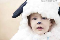 BAAAA!! look at this cute little lamb