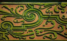 YannArthusBertrand2.org - Parterres de broderies du château de Vaux-le-Vicomte, Maincy, Seine-et-Marne, France (48°34' N – 2°43' E).