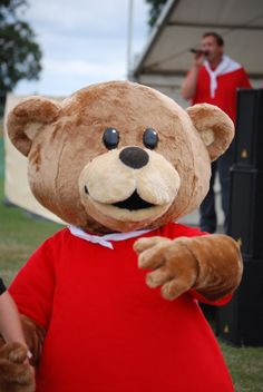 Reddy Teddy #mascot #costume #teddybear #bear