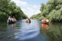 water channel in Danube Delta