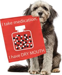 Dry Mouth can lead to periodontal disease. There is relief, ZYMOX Brushless Oral Care. http://zymox.com/products/zymox-brushless-oral-care #ZYMOXOralCare