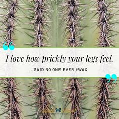 It's almost waxing season! 🌵  Done-for-you skincare marketing content makes spa business easy!