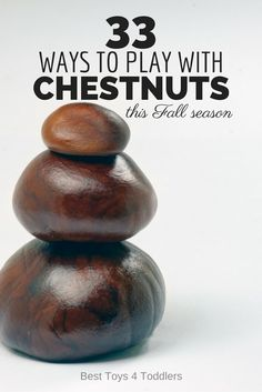 33 Ways to Play with Chestnuts this Fall season (conkers or horse buckeye)