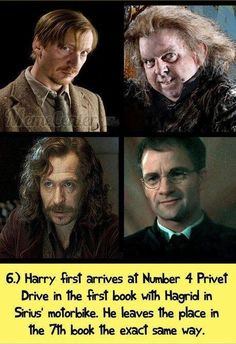 harry potter facts | Tumblr