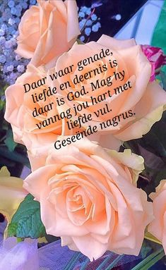 Good Night Blessings, Good Night Wishes, Good Morning Scripture, Evening Quotes, Night Quotes, Goeie Nag, Goeie More, Afrikaans Quotes, Special Quotes