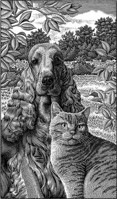 Cocker Spaniel and a Cat. Scratchboard Images of Animals and Architecture. See more art and information about Michael Halbert, Press the Image. Art And Illustration, Engraving Illustration, Ink Illustrations, Kratz Kunst, Stippling Art, Scratchboard Art, Scratch Art, Black And White Drawing, Wood Engraving
