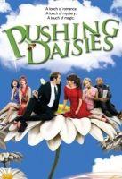 Halottnak a csók (Pushing Daisies) online sorozat