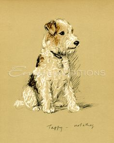 Lucy Dawson - Taffy Wire-Haired Fox Terrier, Not a Thief Painting