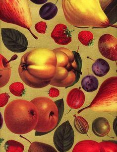 Fresh Fruit Wrap