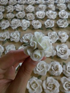 #quisquilie #pastadimais #polymerclay #roses