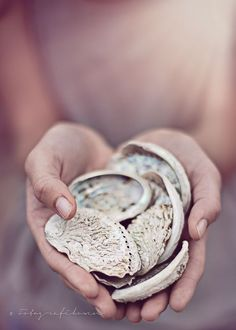 Treasures to hold / Mauve and Cream Gray Giving Hands, Open Hands, Am Meer, Jolie Photo, Dusty Rose, Dusty Pink, Blush Pink, Little Gifts, Mauve