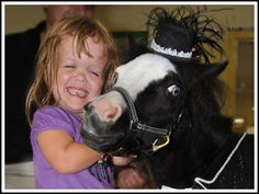 Therapy Horses of Gentle Carousel