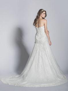 - A-Line Sweetheart Lace Wedding Dress - Ophelia Contessa White on White White Wedding Dresses, Lace Wedding, Collection, Fashion, Moda, Fasion, White Wedding Cakes, White Prom Dresses, Trendy Fashion