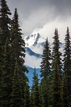 11 best olympic mountains images nature olympic mountains places rh pinterest com