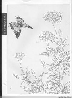 Coloring Sheets, Adult Coloring, Coloring Books, Coloring Pages, Pen And Wash, Batik Art, Bird Artwork, Pen Art, Chinese Painting