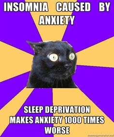 Insomnia caused by anxiety...sleep deprivation makes anxiety 1000 times worse (heck yes it does)
