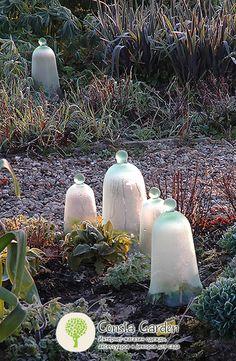 Набор мини-клошей Esschert Design.Декоративные стеклянные клоши служат для укрытия нежных растений и рассады от непогоды и вредителей.