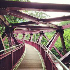 dontrblgme:    あやとり橋 (via ericon0414)