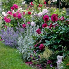 Marvelous 8 Peony Garden Landscaping Ideas For Best Beautiful Garden Inspiration - Peonies Flower Garden Design Idea - Garden Care, Diy Garden, Dream Garden, Garden Projects, Garden Tips, Shade Garden, Summer Garden, Amazing Gardens, Beautiful Gardens
