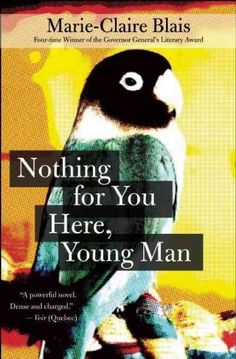 Nothing for you here, young man / Marie-Claire Blais ; translated by Nigel Spencer.