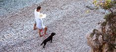 Blog de Pet-friendly | Hoteles que admiten perros Shag Rug, Rugs, Blog, World, Hotels, Shaggy Rug, Farmhouse Rugs, Blogging, Blankets