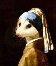 Animals And Pets, Cute Animals, Art Brut, Opossum, Animal Kingdom, Cute Art, Art Inspo, Art Reference, Creatures