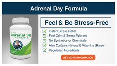 Adrenal Day Formula