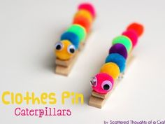 Adorable little caterpillar! Easy, just need some small Pom Pom balls, clothespin, glue, and little googly eyes!