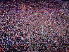Football Field After Auburn Iron Bowl Win 2013.
