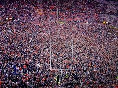 Football Field After Auburn Iron Bowl Win 2013.