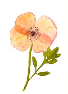 flower original watercolor SALE by zuhalkanar on Etsy, $25.00