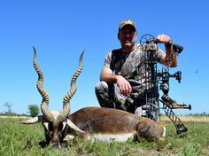 Bow Hunting Blackbuck in Argentina with TGB Outfitters! Bow Hunting, Bows, Argentina, Arches, Bowties, Bow
