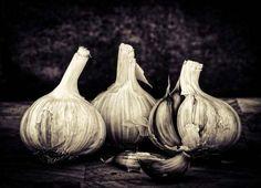27 Creative Examples of Still Life Photography  John Riley Garlic