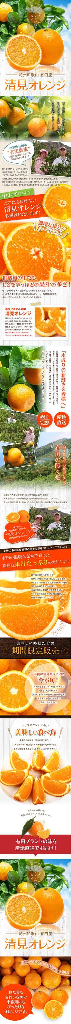 有田産 清見オレンジ