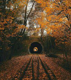 Autumn in ? Photo by Explore. Autumn Scenery, Autumn Cozy, Fall Winter, Autumn Aesthetic, Autumn Photography, Best Seasons, Autumn Inspiration, Fall Season, Fall Halloween