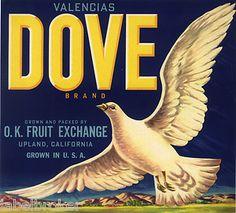 """Dove"" vintage crate label"