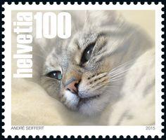 Swiss special stamp: Pets - «Cat» www.postshop.ch/philatelie #Stamps #Postage…