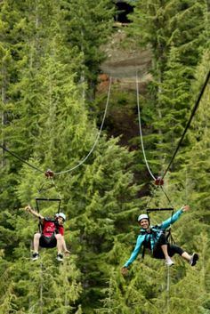 13. Zipline through the forests of Whistler, BC.