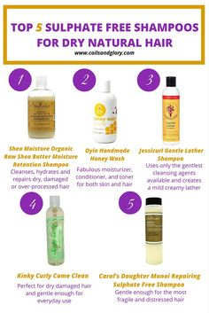 TOP 5 SULPHATE FREE SHAMPOOS FOR DRY NATURAL HAIR