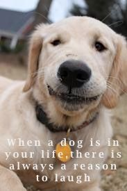 Smile like your dog. So true!