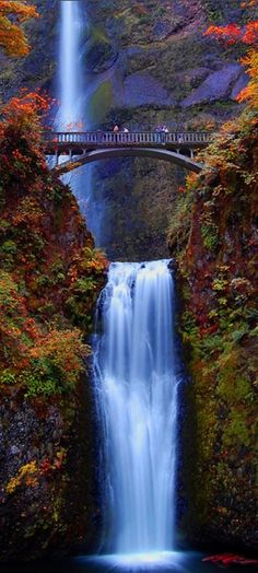 Fall Colors Multnomah Falls Oregon 24x36 Giclee Gallery Print, Wall Decor Travel Poster