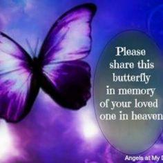 Gabby,purple butterfly love angel
