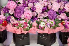 RHS-Hampton-Court-Palace-Flower-Show-Jane-Packer-Flowerona
