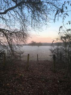 Frosty morning  Monday 6th Feb